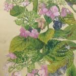山崎 周一 『枯紫陽花』